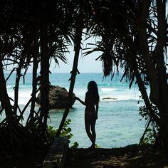 Mondaze #eidon #eidonsurf #sun #beach #waves #palmtrees #fun #barbados #lifeisswell #travel #livetravelsurf