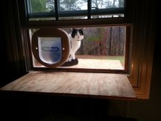 DIY cat door in a window. My momma says buy a kitty door or the cat gets thrown away.