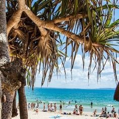 Luxury stretch limos and sedans for weddings, airport transfers and excursions from the Sunshine Coast to Brisbane, Queensland, Australia. Tropic Of Capricorn, Paradise Found, Sunshine Coast, Beautiful Places, Amazing Places, World Traveler, Australia Travel, The Good Place, Coastal