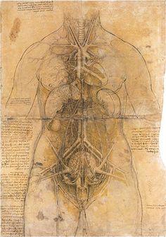 Leonardo Da Vinci. Enlarge: http://www.pinterest.com/pin/287386019946528451/
