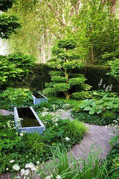 Shade Garden Chelsea 08 The Laurent-Perrier Garden White Gardens, Farm Gardens, Small Gardens, Outdoor Gardens, Zen Gardens, Shade Landscaping, Garden Landscaping, Landscaping Melbourne, Potager Garden