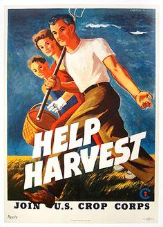 Help Harvest  US Dept. of Agriculture  US Crop Corps  Morley  1943