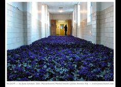 Mental Health hospital filled with flowers