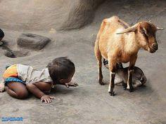僕も!。  Swaminathan P @swami2005 An inquisitive, observant baby!