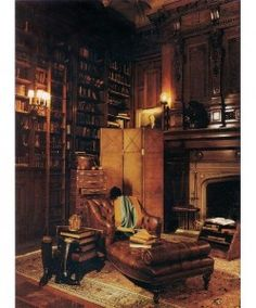 Home Library Ideas - Old fashioned library - den, even includes a sliding ladder.