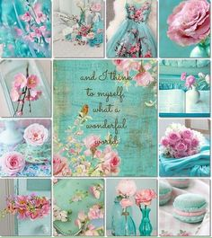 Pink & aqua mood/color collage