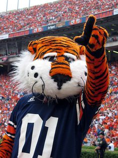 Congrats Aubie! He just won an unprecedented 7th national mascot title!!!! It's great to be an Auburn tiger!