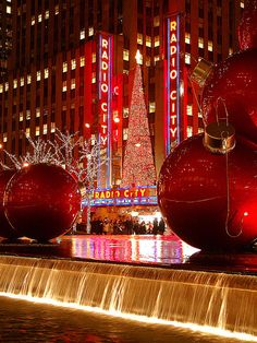 Loved going to the Radio City Music Hall for the Christmas Spectacular when I was growing up.and I am old enough to remember waiting in long lines eating hot chestnuts to warm up (and keep your hands warm too) Christmas Lights, Christmas Time, Merry Christmas, Christmas Collage, Holiday Lights, White Christmas, Photographie New York, New York City Christmas, Christmas Spectacular