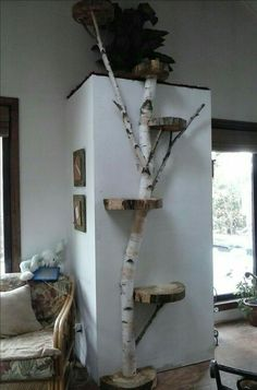 > use as a cat tree, plant stand or display shelves! (Diy Step For Dogs) > use as a cat tree, plant stand or display shelves! (Diy Step For Dogs)
