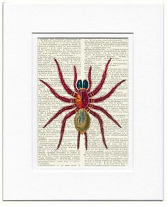 vintage red spider dictionary page print by FauxKiss on Etsy