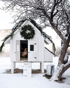 Teaming up with a few of our favorites, + to share our festive chicken coops! Cute Chicken Coops, Chicken Coup, Chicken Coop Designs, Backyard Chicken Coops, Chicken Runs, Chickens Backyard, Backyard Ducks, Beautiful Chickens, Cute Chickens