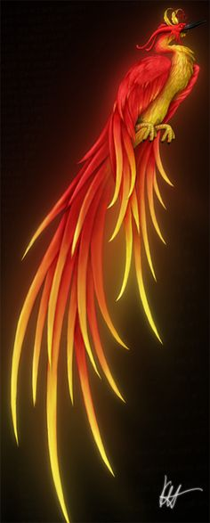 Phoenix ~ In Greek mythology, a phoenix is a long-lived bird that is reborn, obtains new life by arising from the ashes of its predecessor. The phoenix was subsequently adopted as a symbol in Early Christianity. Magical Creatures, Fantasy Creatures, Dragons, Phoenix Bird, Phoenix Dragon, Tatoo Art, Tattoo Bird, Greek And Roman Mythology, Mythological Creatures