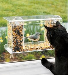 The bird's side is a mirror finish so the bird can't see the cat watching. Mounts with suction cups