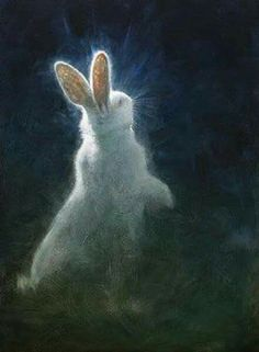 white rabbit painting glowing moonlight night artwork - please comment if you know the artist's name. Art Prints, Rabbit Painting, Animal Art, Fine Art, Illustration, Drawings, Art, Bunny Art, Animal Paintings
