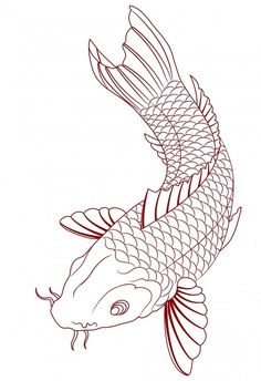 Simple Koi Fish Tattoo Sketch