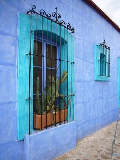 Grades nas janelas são necessárias, infelizmente. Que sejam decorativas.  Oaxaca México. I like the contrast of the two blue hues! :)