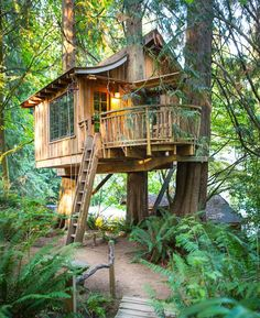 tree house in woods off grid - Google Search
