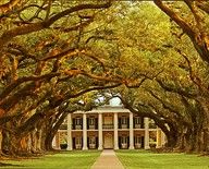 Oak Alley Plantation, Louisiana  Monika McKemie http://Indiana.newsintechnologys.com/style/oak-alley-plantation/