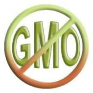 What Exactly Is a GMO—and Why Should You Care? | Organic 15% Challenge