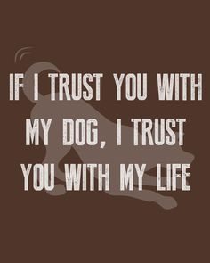If I trust you with my dog, I trust you with my life 🙌 #WeeklyPLAYQuote Cute Cat Quotes, Dog Quotes Funny, Funny Dogs, Play Quotes, I Trusted You, Animal Quotes, Trust Yourself, Life, Animal Sayings