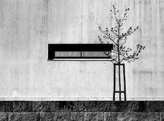 #Imagens #minimalistas, resultantes de #apontamentos sobre a observação das coisas, valorizando as interacções de elementos, entre si e com o todo