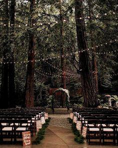 Handy Wedding Bells Information Forest Wedding, Woodland Wedding, Fall Wedding, Dream Wedding, Sunset Wedding, Autumn Wedding Ideas, Boho Wedding, Fairy Lights Wedding, Wedding Set Up