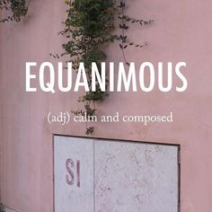 Equanimous (adj) calm and composed Ih kwan uh muh s Unusual Words, Weird Words, Rare Words, Unique Words, Powerful Words, Cool Words, Fancy Words, Big Words, Words To Use