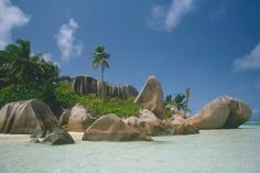 Aldabra, Seychelles  | Browse Your World: Aldabra Atoll [SEYCHELLES]