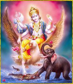 GajendraVaradha