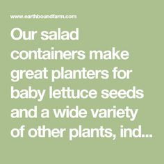 Our salad containers make great planters for baby lettuce seeds and a wide variety of other plants, indoors and out. Getting your hands into the soil, in a garden acre or on a window sill, is good for the soul — and it's a fun way to get kids (and grandkids) involved in learning where their food comes from.