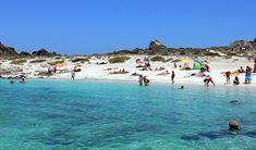 Isla Damas - La Serena - IV Región - Chile