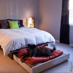 Love this idea! Could just put a twin mattress on rolling platform with locking casters and the mastiff would be in heaven!