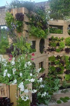 I was at Bloom in Dublin last week and this whole display was done with wooden pallets - amazing