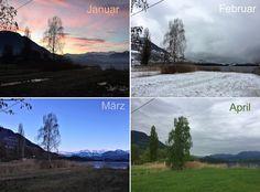 Wie sieht es im Ried in den ersten vier Monaten des Jahres aus? #edgarten #gartenblog #12telBlick Monat, Collagen, Photos, Sunrise