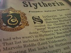 Image about love in My Slytherin Collection by Vittoria Slytherin House, Slytherin Pride, Hogwarts Houses, Slytherin Quotes, Slytherin Snake, Ravenclaw, Draco Malfoy Aesthetic, Slytherin Aesthetic, Erich Von Stroheim