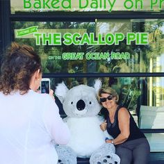 "Drumroll.....come in and meet ""Gumleaf"" our new attraction at the Bakery - feel free to take a photo with Gumleaf and tag them #Gumleafthekoala #apollobay #apollobaybakery #greatoceanroad #homeofthescalloppieontheoceanroad by apollobaybakery"