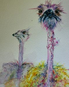 Ink african animals - Crazy Ostriches by #joannacookeart.com