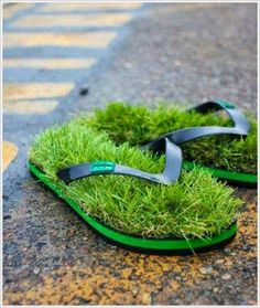 fbfunnyphoto: Grass Funny Shoe Photo