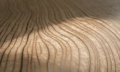 Wallcovering inspired by veins of wood