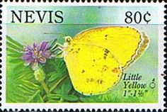 Nevis 1993 Butterfly Little Yellow Fine Mint SG 738 Scott 797 Other West Indies and British Commonwealth Stamps HERE!
