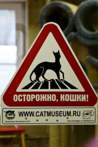 Russia - Cats' Republic