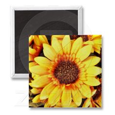 Sunflower Magnet from Zazzle.com