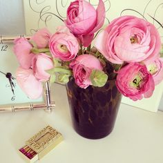 love these Ranunculus things