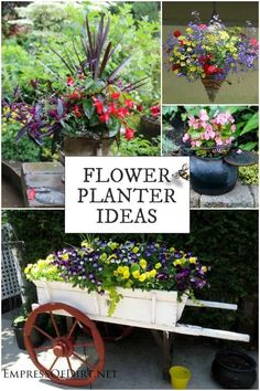 Flower Garden This gallery of flower planter ideas will give you plenty ideas for growing plants in containers in any size garden - This gallery of flower planter ideas will give you plenty ideas for growing plants in containers in any size garden. Flower Planters, Garden Planters, Flower Pots, Potted Flowers, Outdoor Planters, Garden Trellis, Growing Flowers, Growing Plants, Buy Flowers