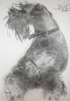 """Exceptional """"schnauzer dog"""" information is offered on our site. Animal Paintings, Animal Drawings, Drawing Animals, Schnauzer Art, Miniature Schnauzer, Sketch Style, Dog Portraits, Illustrations, Dog Art"""