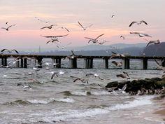 morze w Gdyni Morze