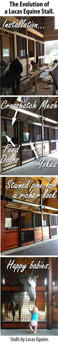 Horse stall ideas. Like the door being in the center. Would still have door bottom half solid.  Lucas Equine horse stalls. is creative inspiration for us. Get more photo about Home Decor related with by looking at photos gallery at the bottom of this page. We are want to say thanks if you like to share this post …