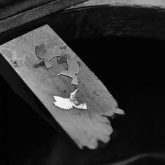 Prace nad nową kolekcją idą pełną parą. Delikatne kolibry jakby zaklęte w ruchu, są inspiracją do powstania kolekcji AVES. Zdjęcie Aleksandra Sobieraj.