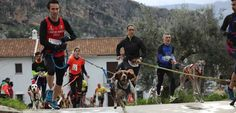 Canicross y bikejoring: las carreras populares para perros llegan a Almería