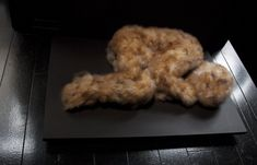 Glendinning Feather child 3-Courtesy of the artist and gallery Da-end, Lucy Glendinning